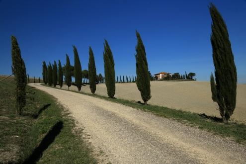 Gutshof bei Montalcino
