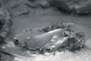 Schlammloch im Geothermalgebiet Heverir