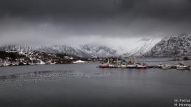 Austnesfjorden, Lofoten
