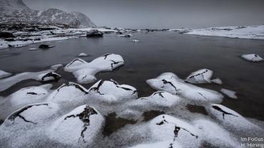 Eisknospen, Flakstadpollen, Lofoten