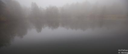 Die erste Nebelsuppe